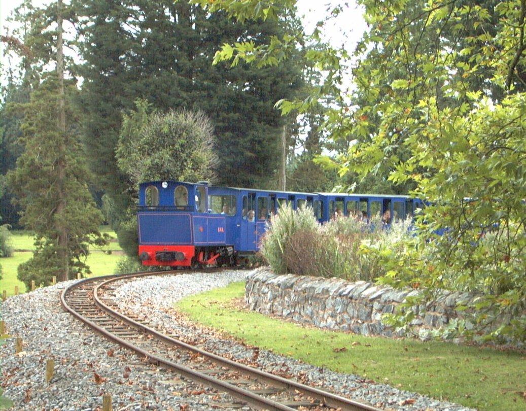 Train near the lake