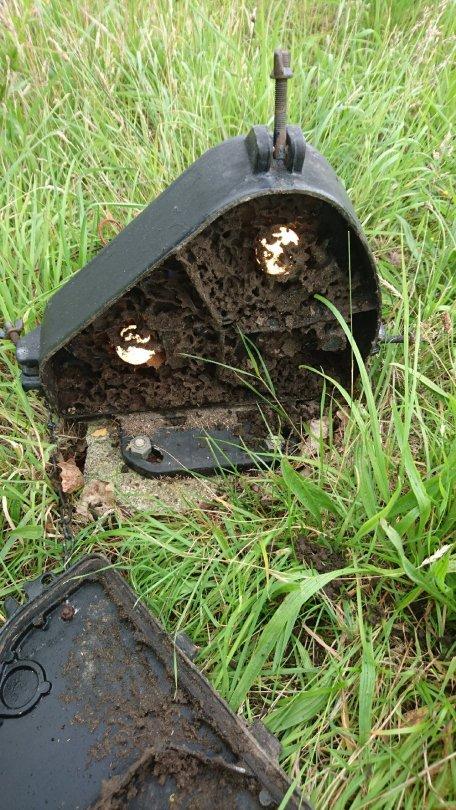 The Ant Farm!