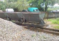 Skip Wagons at Rees Road