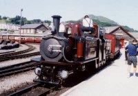 Merlin at Porthmadog