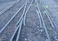 Dual Gauge track