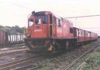 Diesels on the narrow gauge