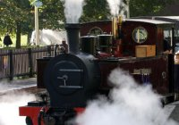 Be a Steam Train Driver with ZSL Whipsnade Zoo