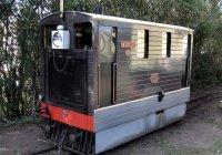 Diesel loco Weasel
