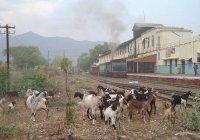 Mettapalayam station