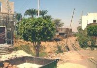 Sugar railway at New Qurna