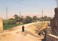 Narrow gauge railway near New Qurna