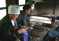 Passengers on the Shibanxi train