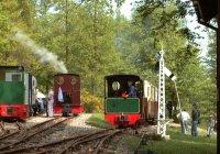 Train approaching Stony Shaw