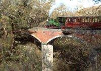 Douglas on Dolgoch viaduct