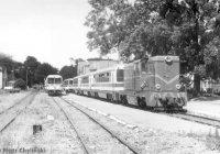 Three trains in Gryfice.