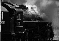 Essence of steam