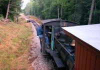 Morning train approaches Humason Brook trestle