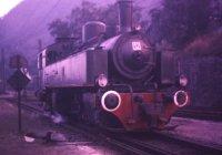 Metre gauge loco