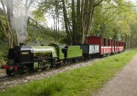 waverley and the bluebells