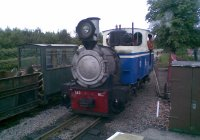 Running run the train