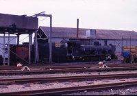 NG steam loco 2