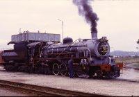 Knysna line steam loco
